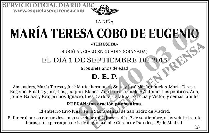 María Teresa Cobo de Eugenio